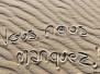 Tour en Buggy et descentes en Sandboard dans les dunes de sable autour de l'oasis de Huacachina