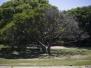 Une réserve écologique (un peu trop) au soleil